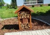 pszczoły 011